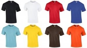 Prestige Diffusion - Tee-Shirt Manches Courtes 190g - Vert